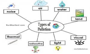 pollution answer key copy